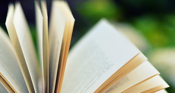 Ispirazione e libri