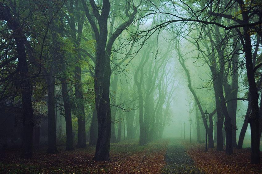 Sfondi d'autunno, sfondi di ottobre