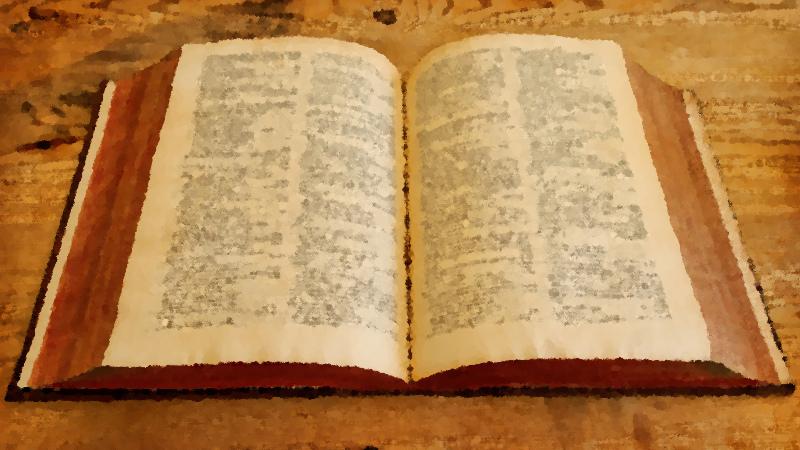 Apprendere attraverso la lettura