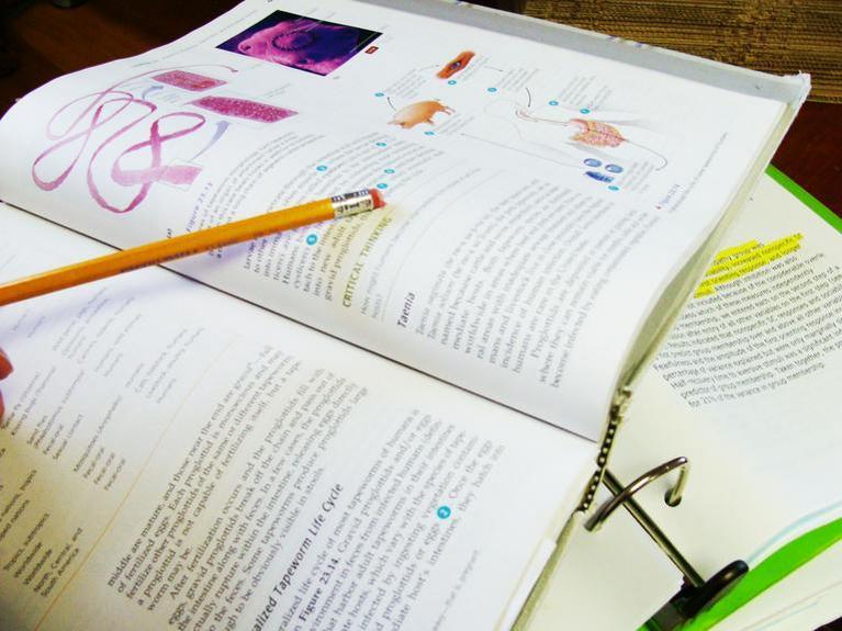 Studiare è come imparare un nuovo mestiere