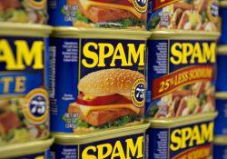 L'intento di Spamnesty è quello di far perdere tempo agli spammer e ai troll
