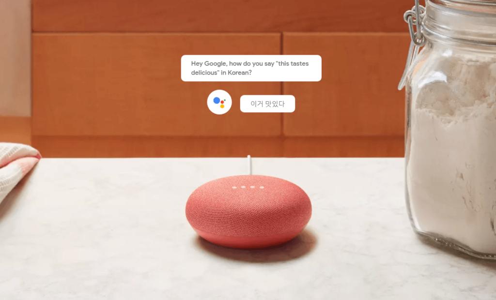 Google Home Traduttore