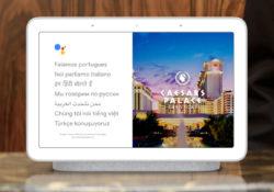 Google Home Traslator